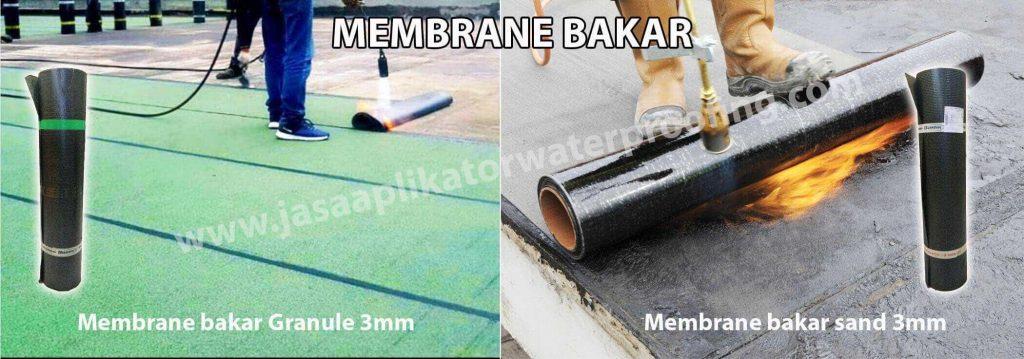Membrane bakar